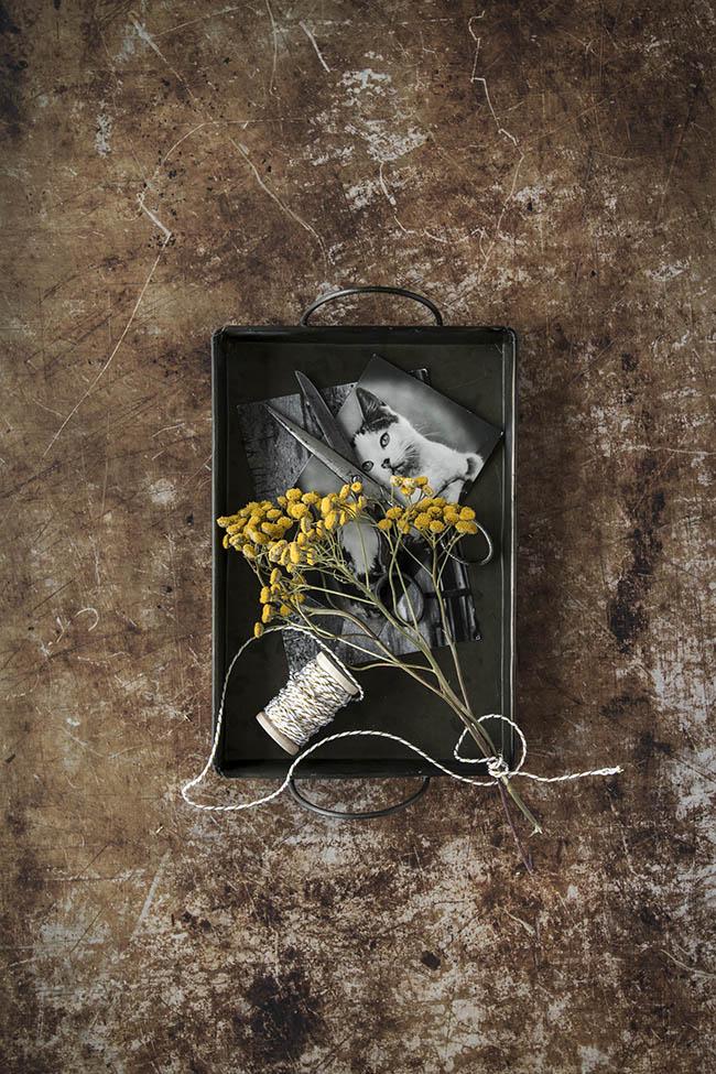 Backdrop van een oude geleefde bakplaat; fotografie en styling